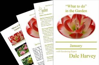 """What to do"" in the Garden for January"