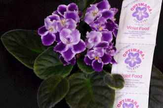 6 Sachets of African Violet Food